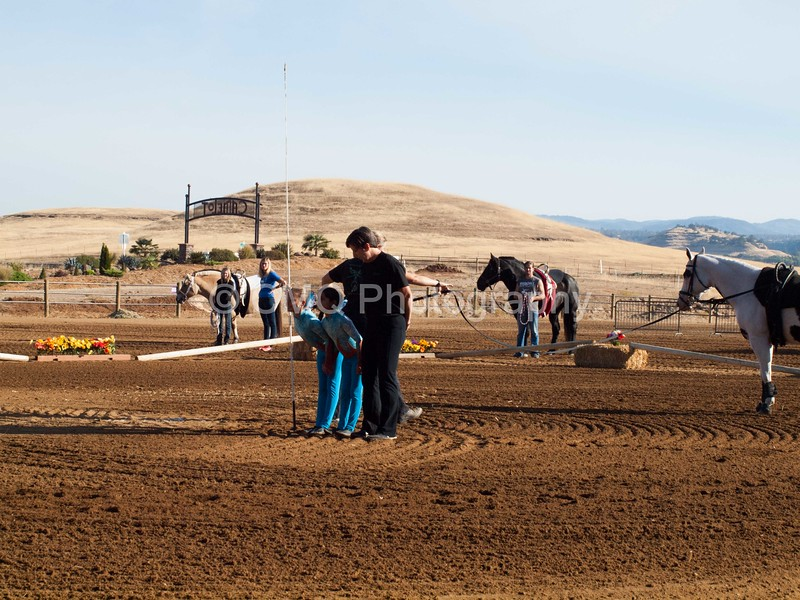 2016_Vaulting_Camelot_(79_of_3844)