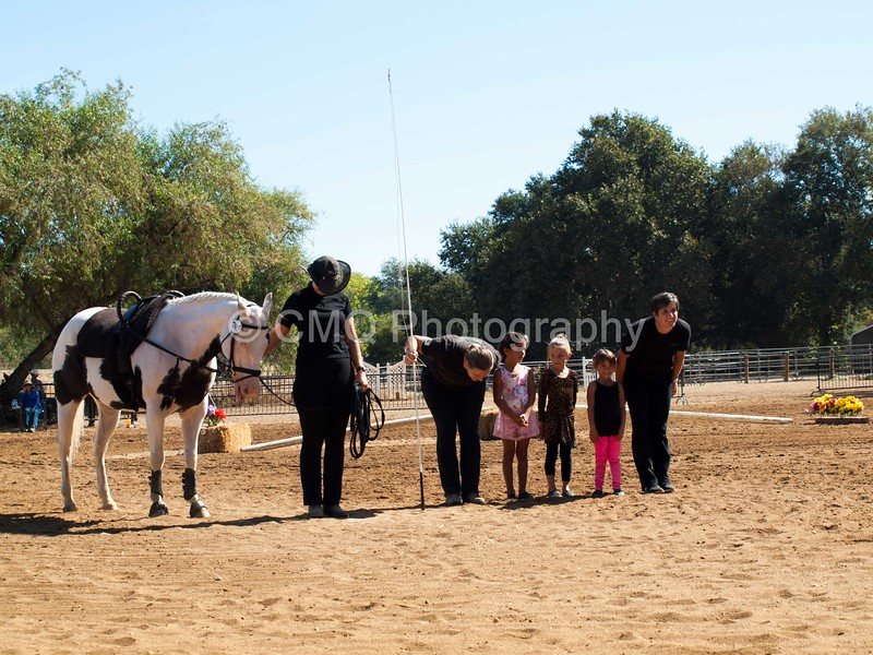 2016_Vaulting_Camelot_(1714_of_3844)