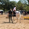 2016_Vaulting_Camelot_(1856_of_3844)