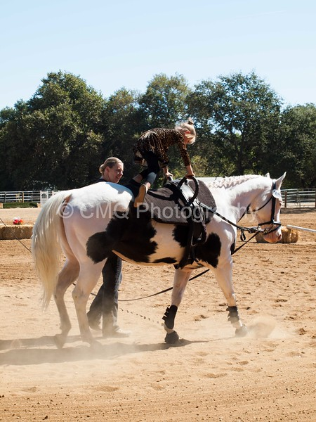2016_Vaulting_Camelot_(1907_of_3844)