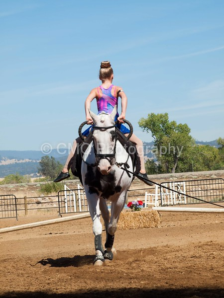 2016_Vaulting_Camelot_(2758_of_3844)