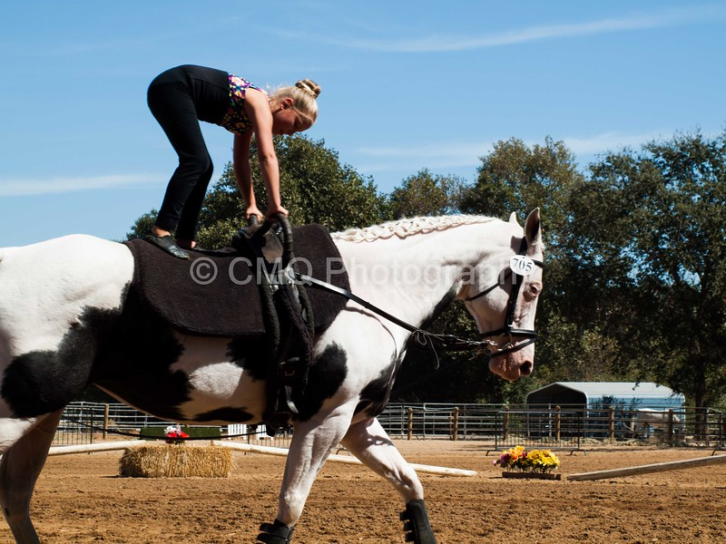 2016_Vaulting_Camelot_(2600_of_3844)