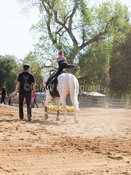 2016_Vaulting_Camelot_(1298_of_3844)