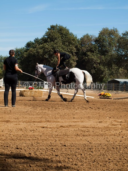 2016_Vaulting_Camelot_(2781_of_3844)