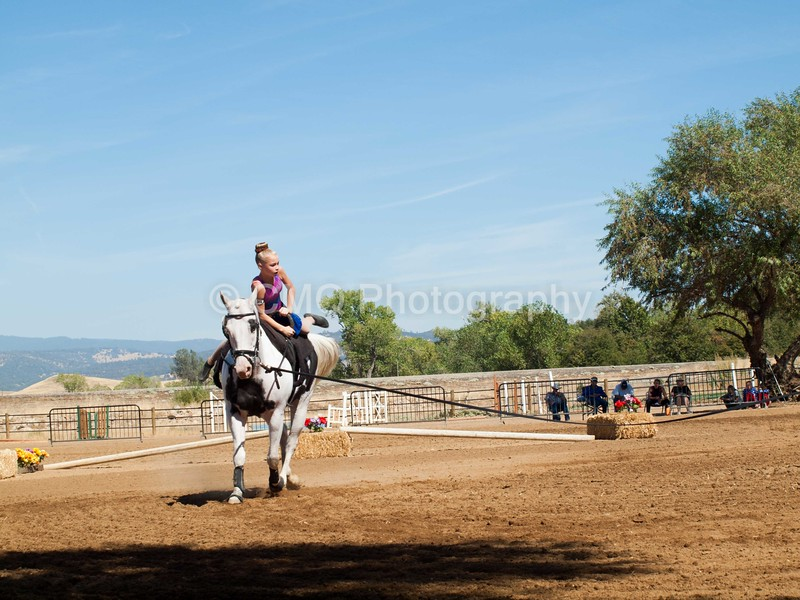 2016_Vaulting_Camelot_(2737_of_3844)