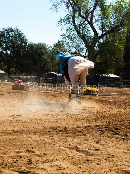 2016_Vaulting_Camelot_(1467_of_3844)