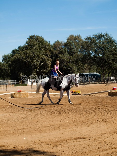 2016_Vaulting_Camelot_(3063_of_3844)