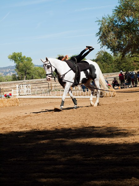 2016_Vaulting_Camelot_(2872_of_3844)