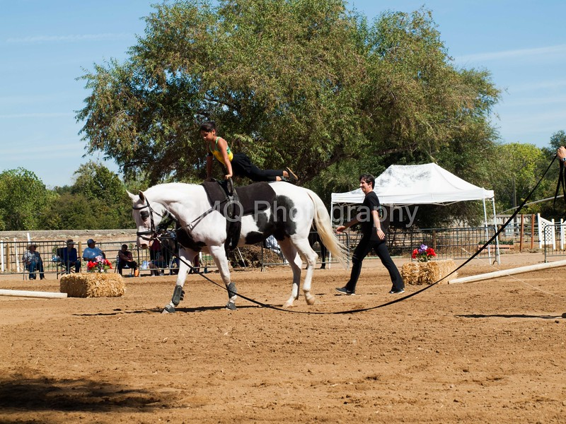 2016_Vaulting_Camelot_(2860_of_3844)