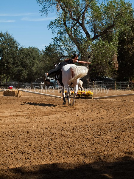 2016_Vaulting_Camelot_(2787_of_3844)