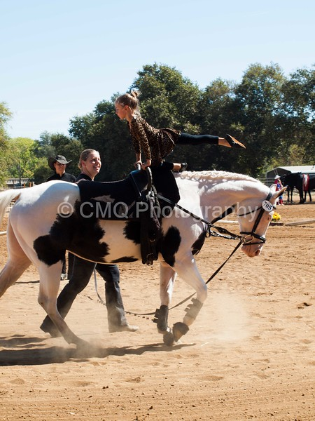 2016_Vaulting_Camelot_(1882_of_3844)