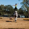 2016_Vaulting_Camelot_(3132_of_3844)