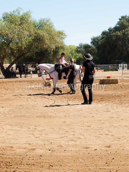2016_Vaulting_Camelot_(1868_of_3844)