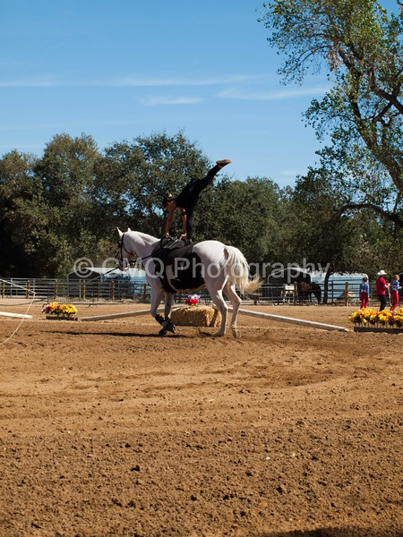 2016_Vaulting_Camelot_(2780_of_3844)