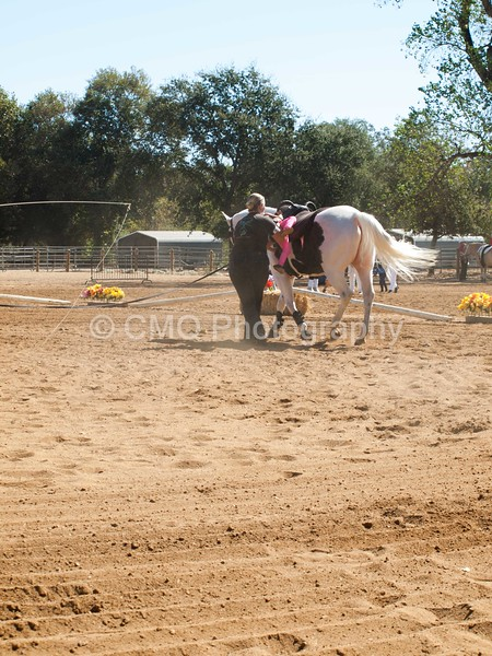 2016_Vaulting_Camelot_(1692_of_3844)