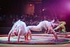 Circus Juventas 2013 Gala-141