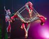 Circus Juventas 2013 Gala-208
