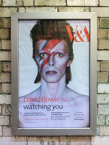 David Bowie is... at the V&A in London 2013