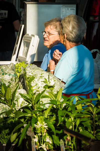 Lorraine Faulkner (left) and Maureen Morgan (right), of Homestead Farms in Coldwater, Miss. prepare hydroponic farm raised vegetables for sale at the first day of the Farmer's Market at the DeSoto County Earth Day Celebration on Saturday, April 23, 2016 in Hernando.