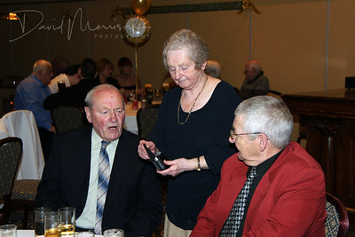 Golden Wedding Anniversary 044