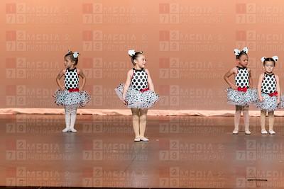 Dalmatians-5