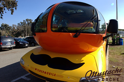 Mustache Dache SparkyPhotography SD 217
