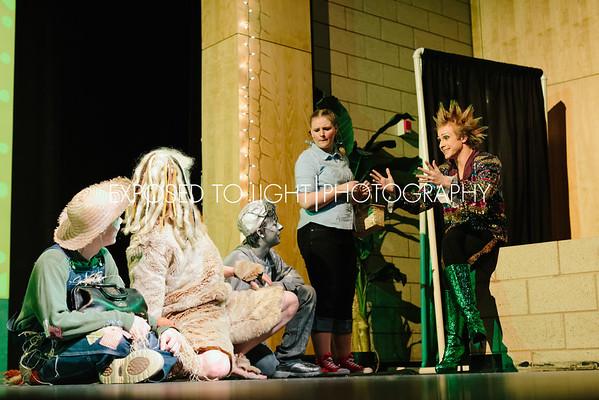 Chaska High School 2013 OZ - Performance-324