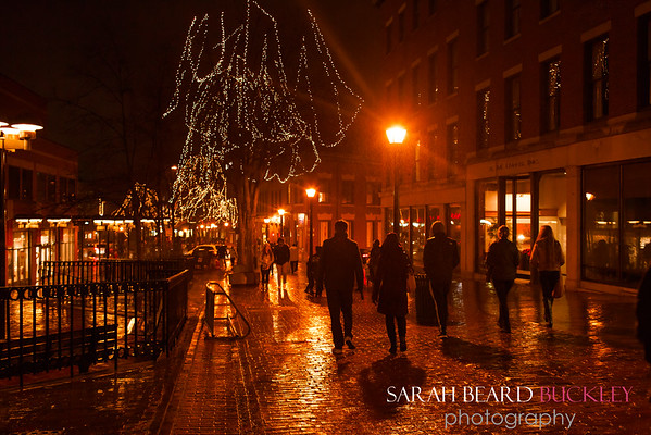 Sbbuckley_PD_TreeLighting_2016-11