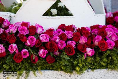 roseparade2016-1799