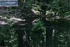 YSI Sanborn Park 9788