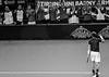 Andy Murray - Davis Cup
