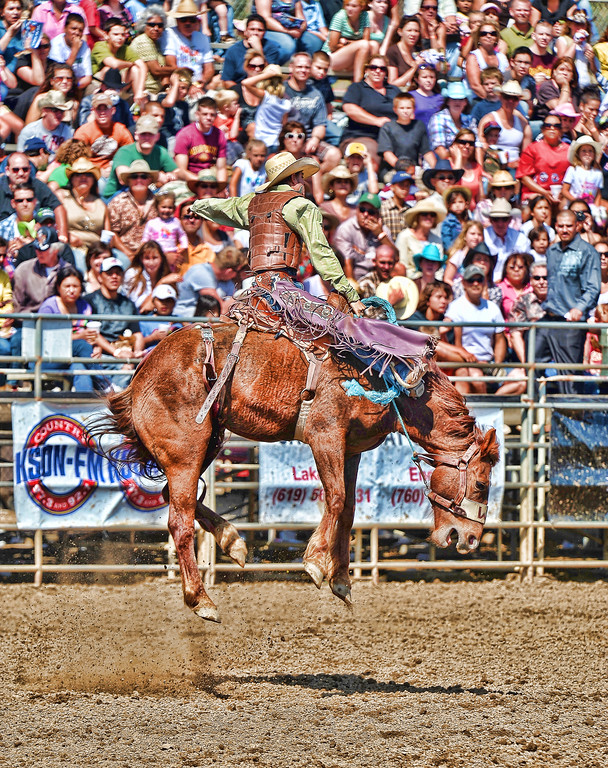 Lakeside Rodeo 2010