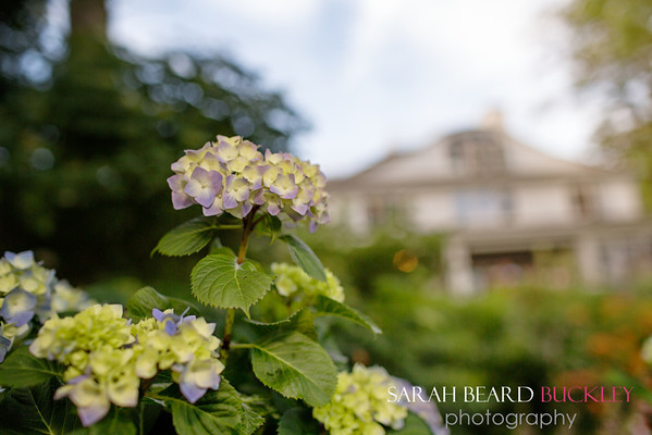 www.sbbphotography.com
