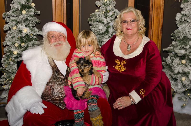 2016 Asheville Holidays_342