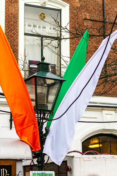 St. Patricks Day 2013