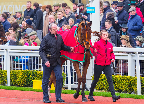 New Year's Day Races
