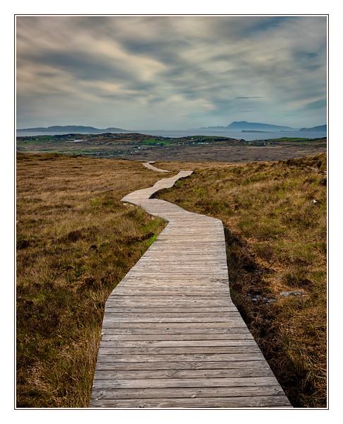 The Auld Bog Road