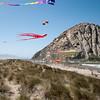 kite festival 16  042416_00069
