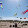 kite festival 16  042416_00083