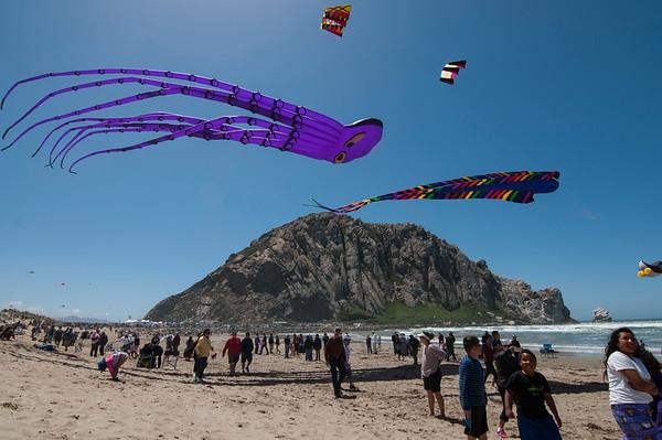 Morro Bay Kite Festivals