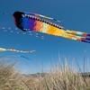 kite festival 16  042316_00020