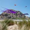 kite festival 16  042316_00031