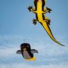 kite festival 16  042416_00051
