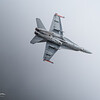 McDD F/A-18C Hornet (Operated by HavLLv31)