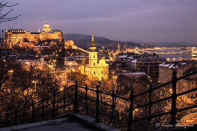 Buda castle from the Citadel
