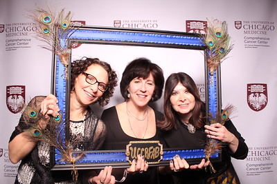 The University of Chicago Cancer Research Foundation Fundraiser