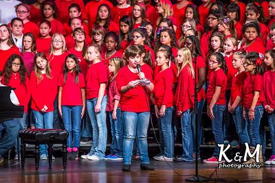 2014-11-11 AHS Choir Veteran's Day Concert 17.jpg