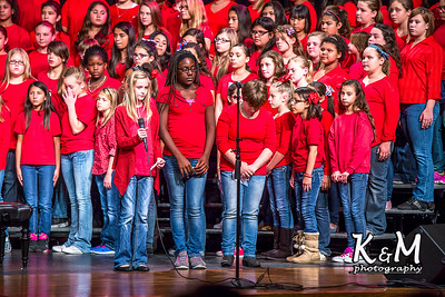 2014-11-11 AHS Choir Veteran's Day Concert 13.jpg