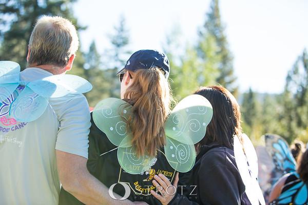0172_Butterfly_2015