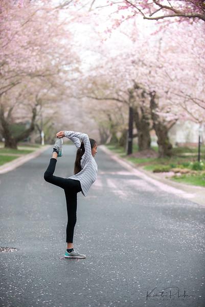 CherryBlossom-9